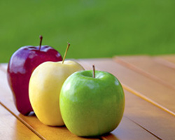 Quality Selection of Conventional & Organic Fruits & Vegetables ...